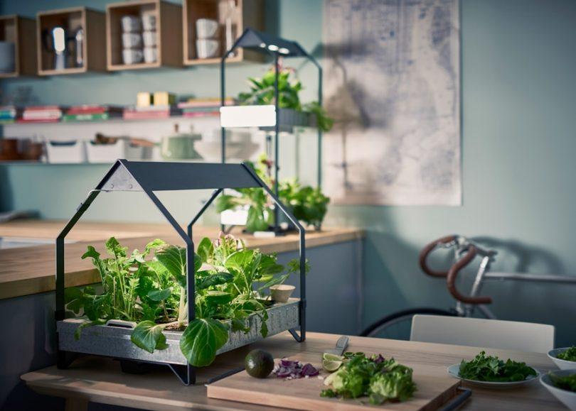 El huerto futurista de IKEA